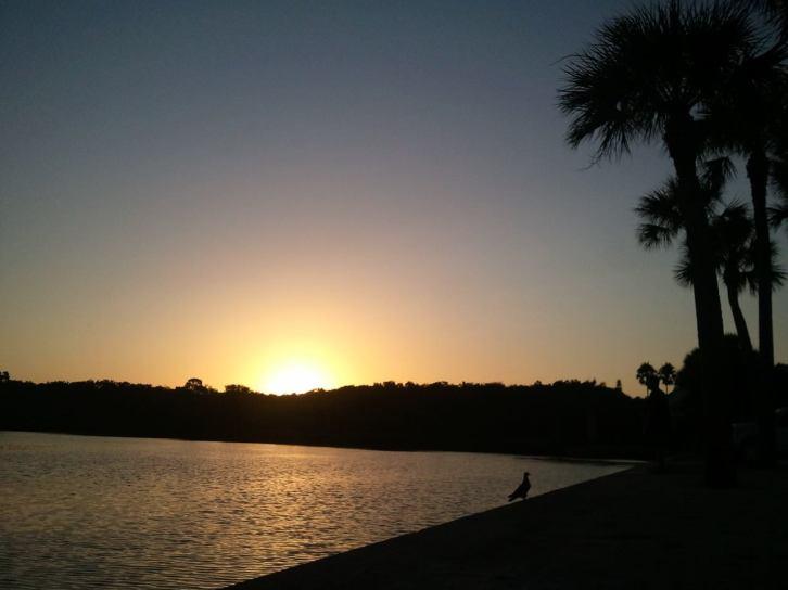Siesta Key Sunrise on the Bay Early Bird