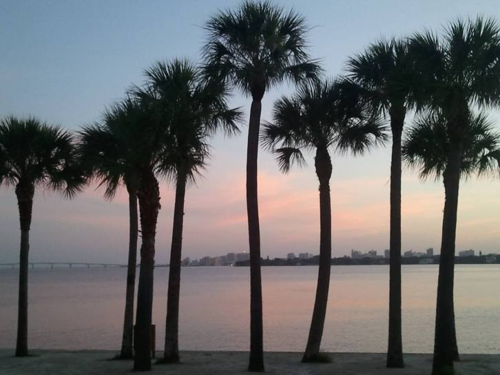 Siesta Key Sunrise Palms on the Bay
